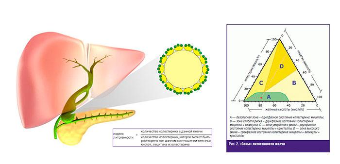 индекс и зона литогенности