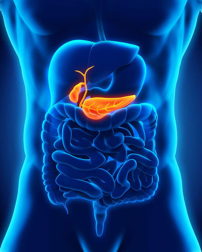 Последствия удаления желчного пузыря для пищеварения