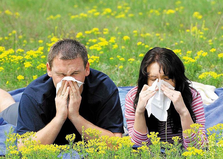 Мужчина и женщина лежат на траве и чихают, прикрываясь платком